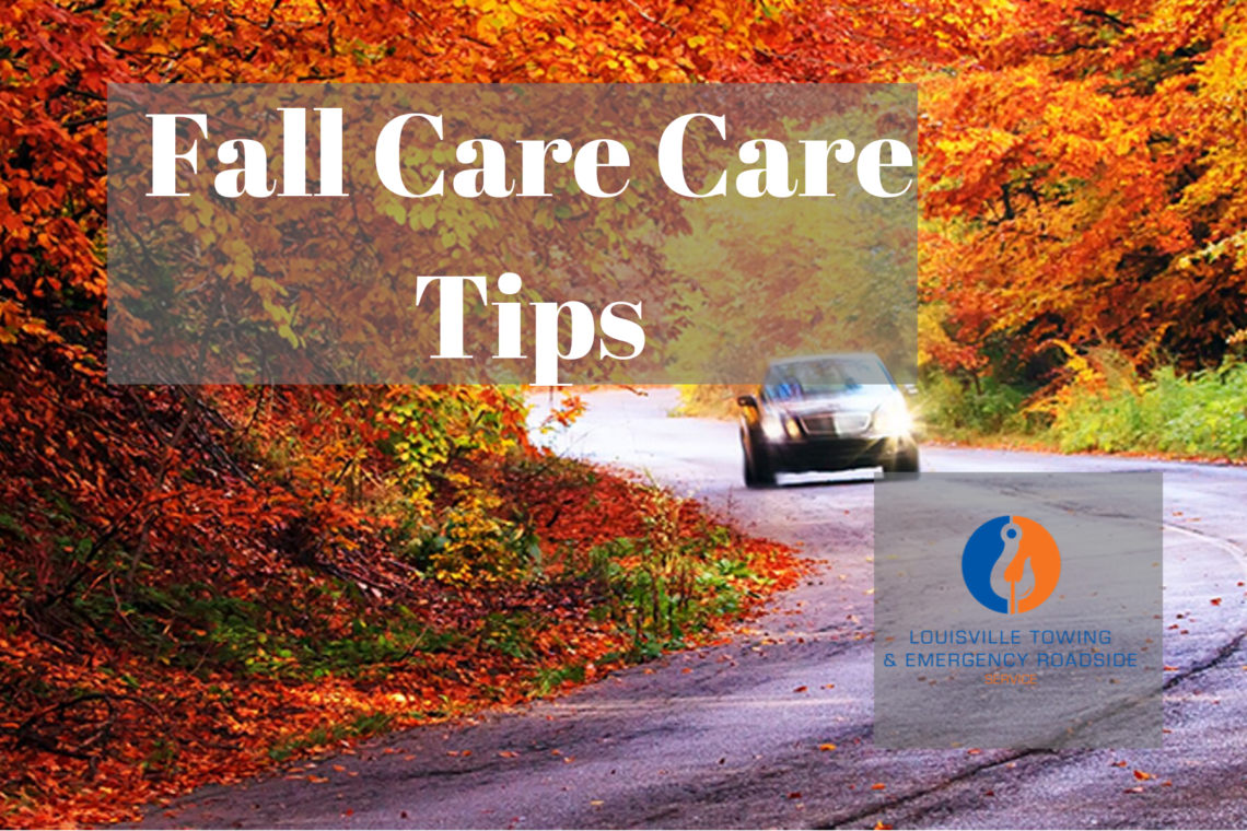 Fall Care Care Tips