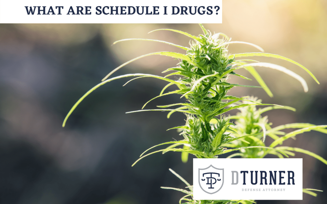 What are Schedule I Drugs?