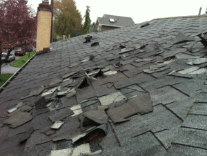 shingle damage in indianapolis