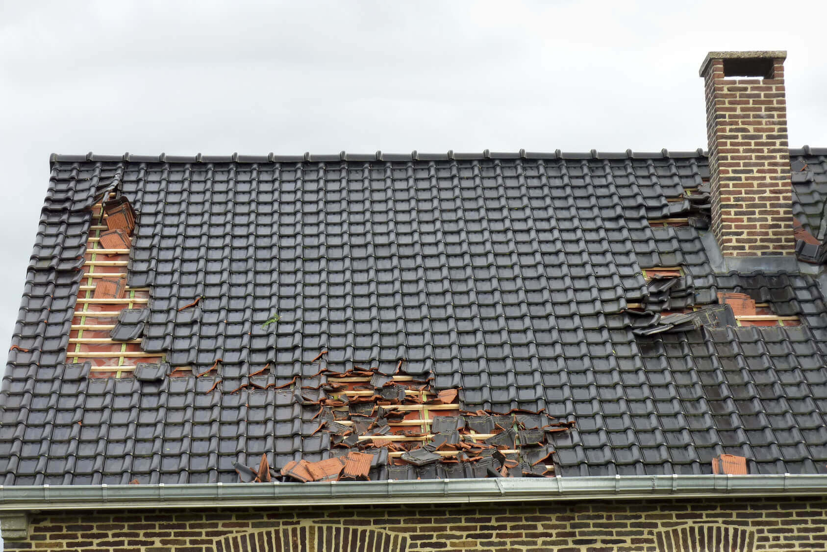 search for an emergency roof repair near me when your shingles look like this