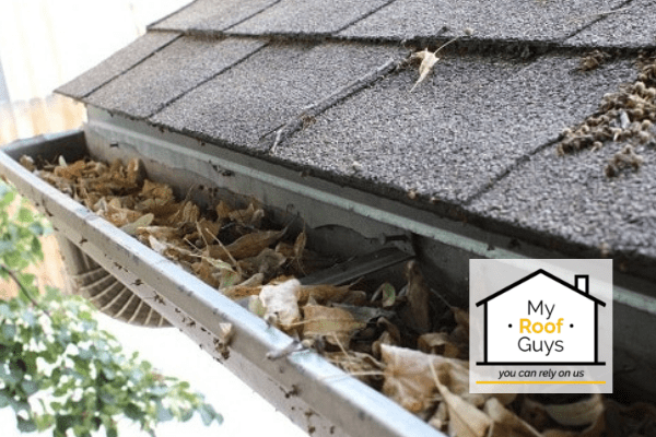 Signs You Need to Clean Your Gutters
