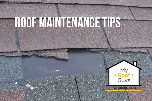 Summer Roof Maintenance Tips